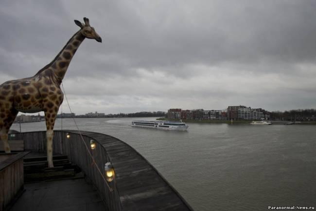 7. Копия жирафа в натуральную величину стоит на борту полномасштабной копии...